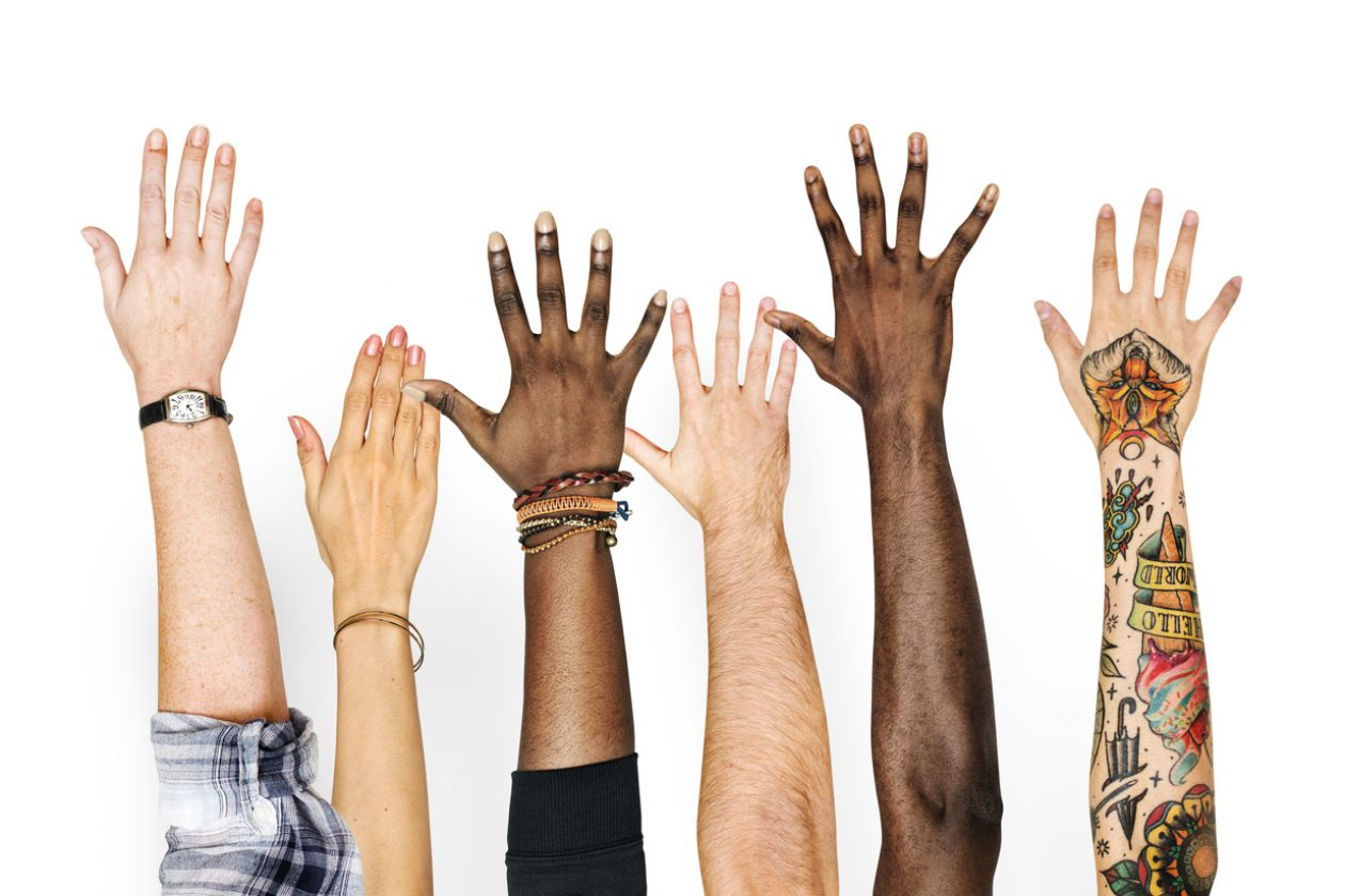 Students hands raised in unison.